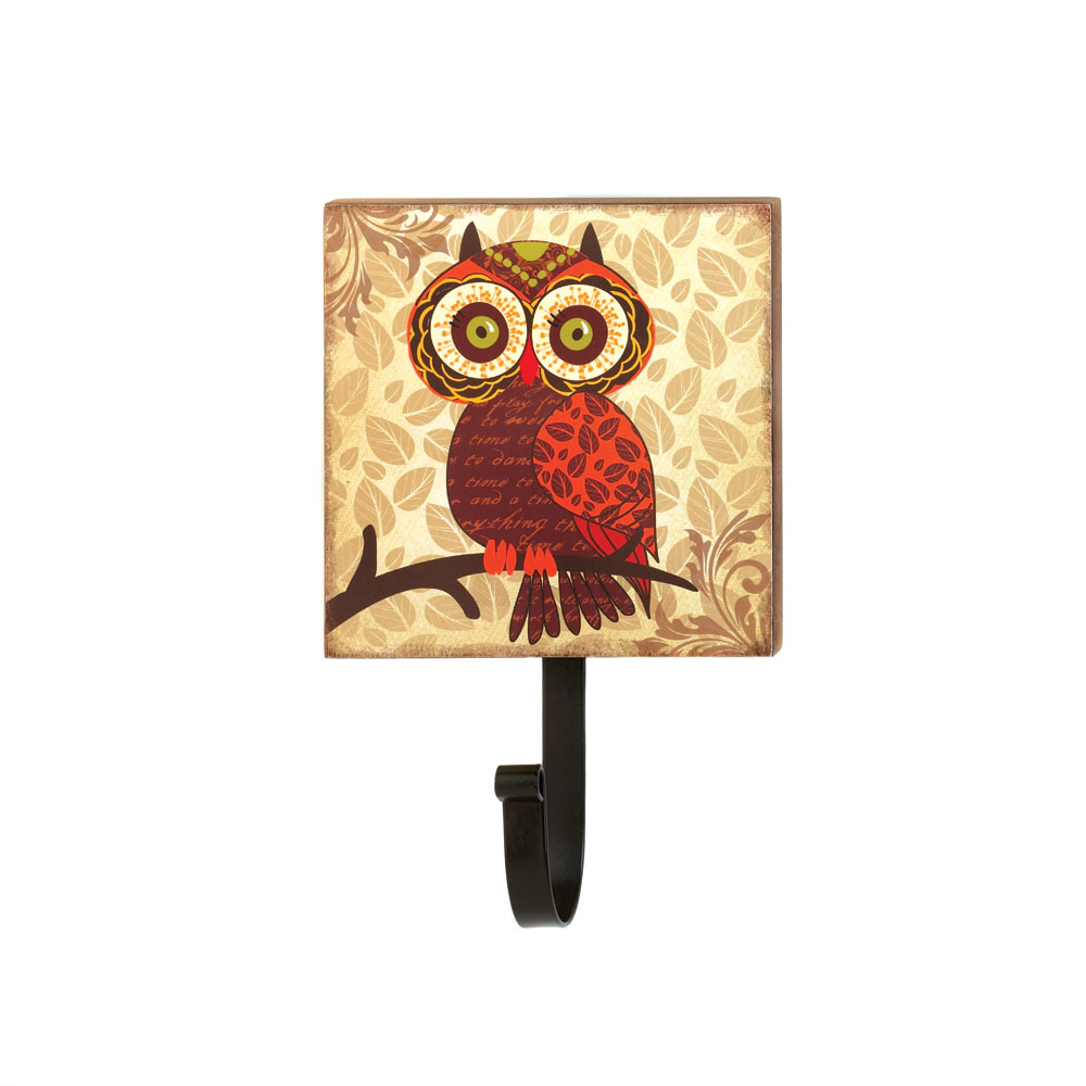 Retro Big Eyes Owl Wall Hook